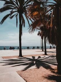 barcelona-mooi-weer-taalreis