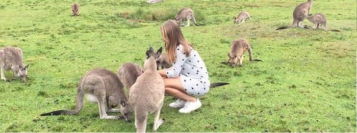 Engelse taalcursus voor volwassenen in Sydney