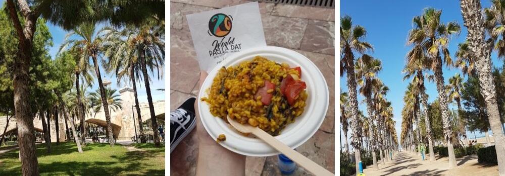 Park-en-paella-na-de-Spaanse cursus